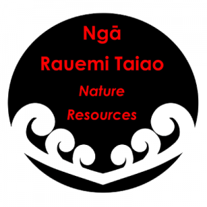 Poi Princess Nature Māori Resources Button