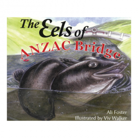The Eels Of ANZAC Bridge