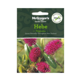 Napuka – Hebe (Native New Zealand Seeds)