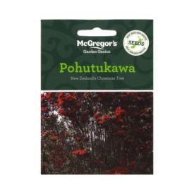 Pohutukawa – NZ Christmas Tree (McGregor's Native New Zealand Seeds)