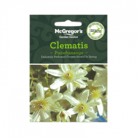 Puawhananga – Clematis – (Native New Zealand Seeds)