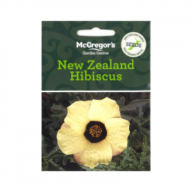 New Zealand Hibiscus – (Native New Zealand Seeds)