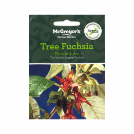 Kotukutuku – Tree Fuchsia (Native New Zealand Seeds)