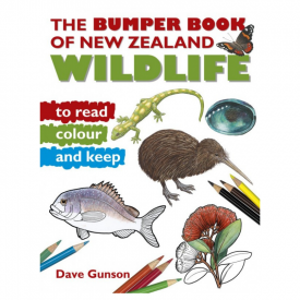 Bumper Book Of New Zealand Wildlife To Read, Colour & Keep