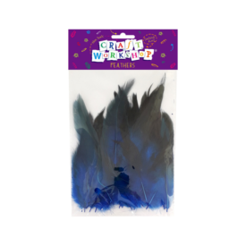 Black & Blue Feathers